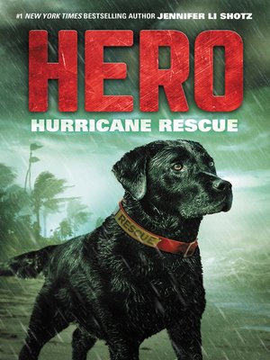 cover image of Hurricane Rescue