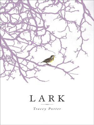 cover image of Lark