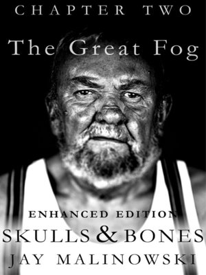 cover image of The Great Fog