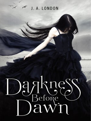 cover image of Darkness Before Dawn
