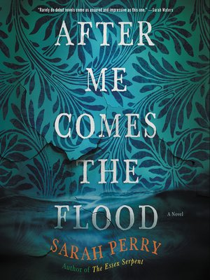 cover image of After Me Comes the Flood
