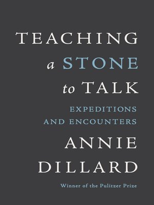 cover image of Teaching a Stone to Talk