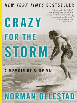 cover image of Crazy For the Storm