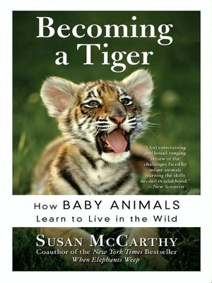 cover image of Becoming a Tiger