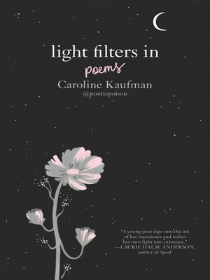 cover image of Light Filters In