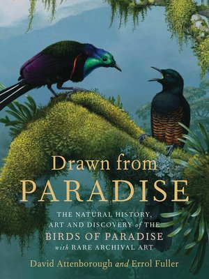cover image of Drawn from Paradise