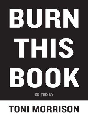 cover image of Burn This Book