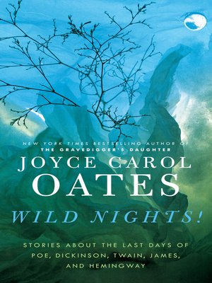 cover image of Wild Nights!