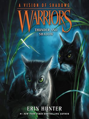 cover image of Thunder and Shadow