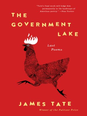 cover image of The Government Lake
