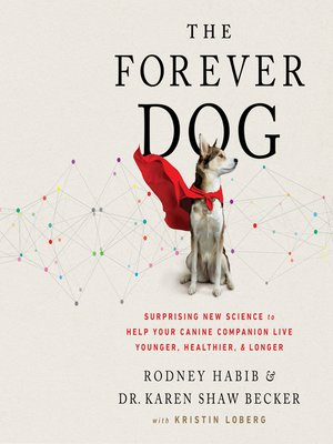 cover image of The Forever Dog