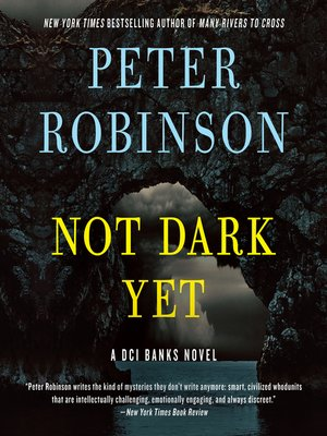 cover image of Not Dark Yet