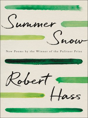 cover image of Summer Snow
