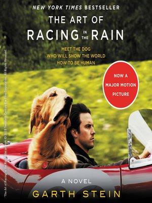 cover image of The Art of Racing in the Rain