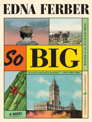 cover image of So Big