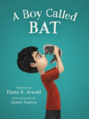 cover image of A Boy Called Bat