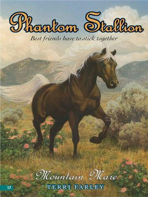 cover image of Mountain Mare