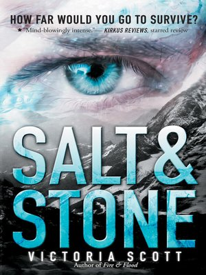 cover image of Salt & Stone