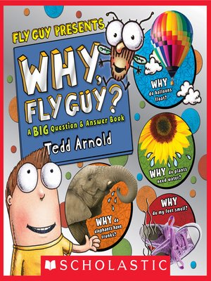 cover image of Why, Fly Guy?