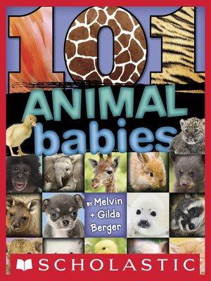 cover image of 101 Animal Babies