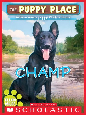 cover image of Champ