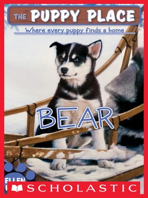 cover image of Bear