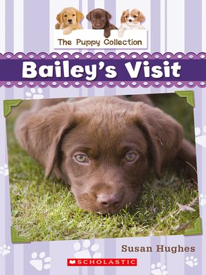 cover image of Bailey's Visit