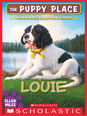 cover image of Louie