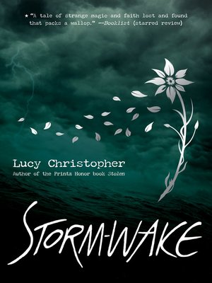 cover image of Storm-Wake