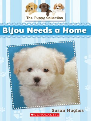 cover image of Bijou Needs a Home