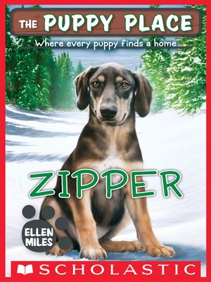 cover image of Zipper