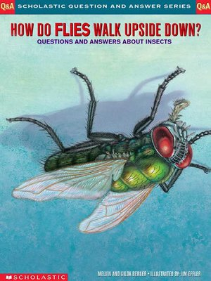 cover image of How Do Flies Walk Upside Down?
