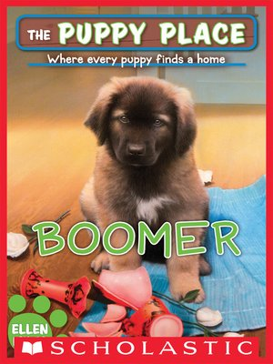 cover image of Boomer
