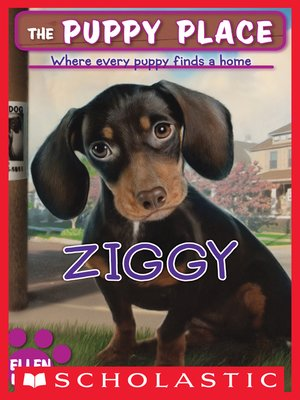 cover image of Ziggy