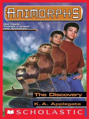 cover image of The Discovery