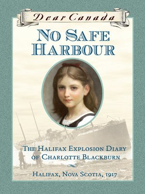 cover image of No Safe Harbour