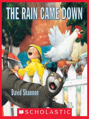 cover image of The Rain Came Down