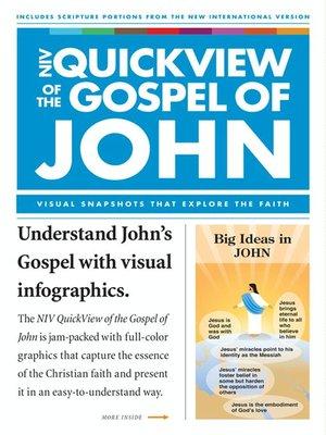 cover image of NIV QuickView of the Gospel of John