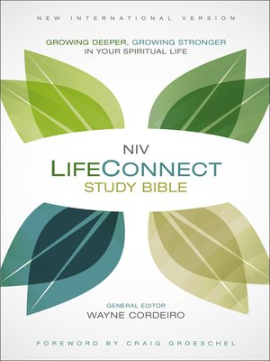 cover image of NIV, LifeConnect Study Bible, eBook