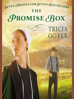 cover image of The Promise Box