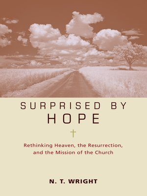 cover image of Surprised by Hope Participant's Guide