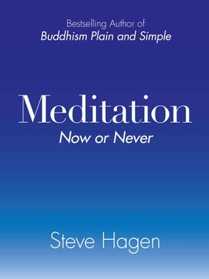 cover image of Meditation Now or Never
