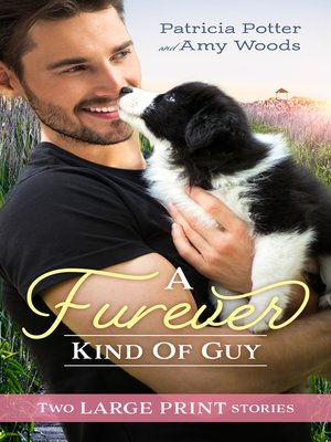 cover image of A Furever Kind of Guy / The Soldier's Promise / An Officer and Her