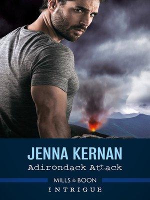 cover image of Adirondack Attack