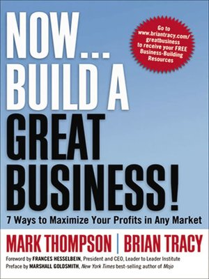 cover image of Now, Build a Great Business!