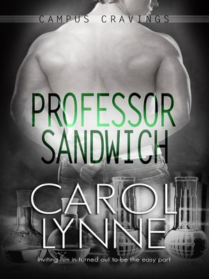 cover image of Professor Sandwich