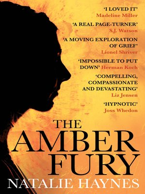cover image of The Amber Fury