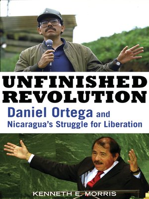 cover image of Unfinished Revolution