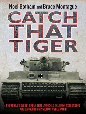 cover image of Catch That Tiger