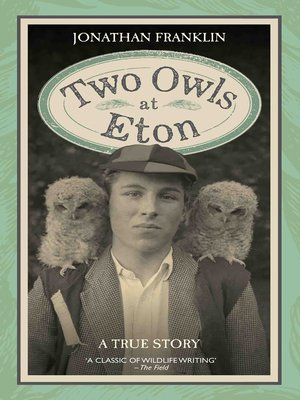 cover image of Two Owls at Eton